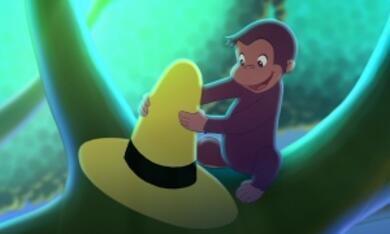 Coco, der neugierige Affe - Bild 8