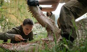 Auslöschung mit Natalie Portman - Bild 2