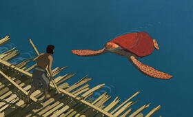 The Red Turtle - Bild 1