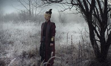 The Assassin - Bild 6