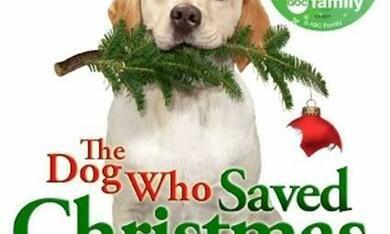 The Dog Who Saved Christmas - Bild 2