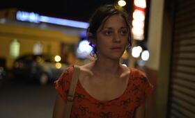 Marion Cotillard - Bild 72