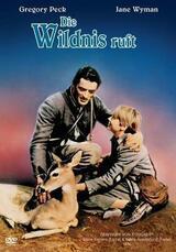 Die Wildnis ruft - Poster