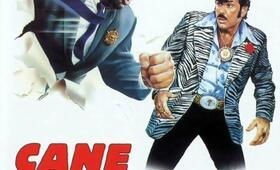 Bud, der Ganovenschreck mit Bud Spencer und Tomas Milian - Bild 9