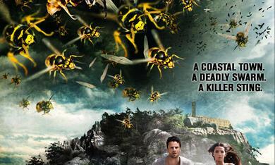 Die Bienen - Tödliche Bedrohung - Bild 3