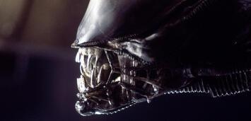 Bild zu:  Alien - Das unheimliche Wesen aus einer fremden Welt