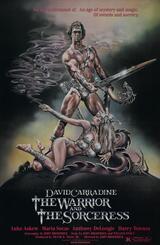 Der Krieger und die Hexe - Poster