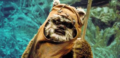 Ewok Wicket in Star Wars