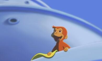 Coco, der neugierige Affe - Bild 9