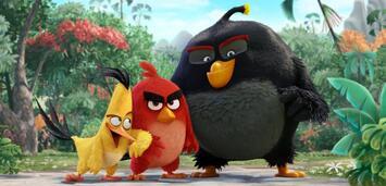 Bild zu:  Angry Birds
