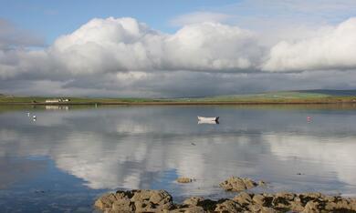 Die Nordsee - Unser Meer - Bild 2