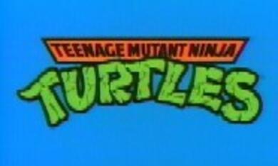 Teenage Mutant Hero Turtles - Bild 2