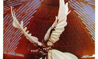 Auch Vögel können töten - Bild 2