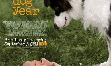 A Dog Year - Bild 1