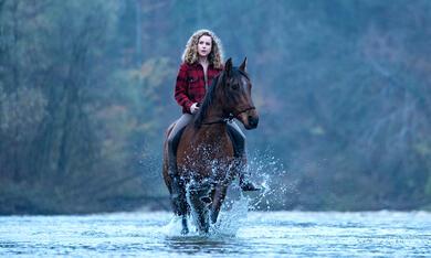 Reiterhof Wildenstein - Der Junge und das Pferd mit Klara Deutschmann - Bild 4