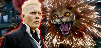 Bild zu:  Phantastische Tierwesen 2: Grindelwalds Verbrechen