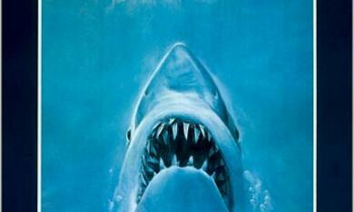 Der weiße Hai - Bild 10