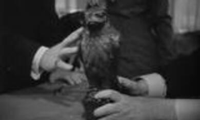 Die Spur des Falken - Bild 7