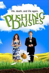 Pushing Daisies - Poster