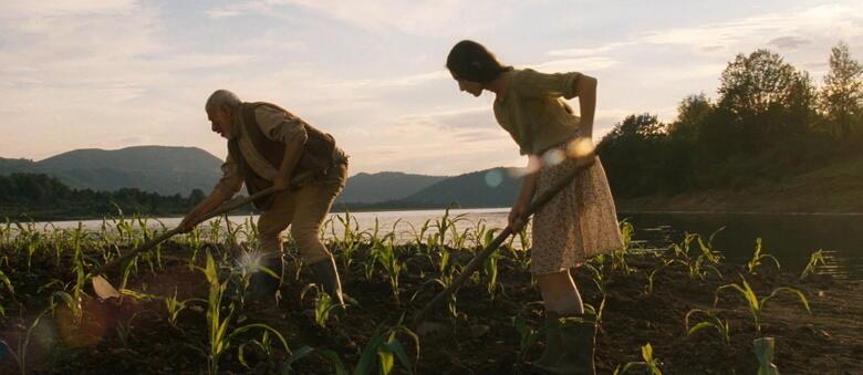 Die Maisinsel