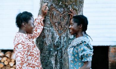 Die Farbe Lila mit Akosua Busia und Desreta Jackson - Bild 5