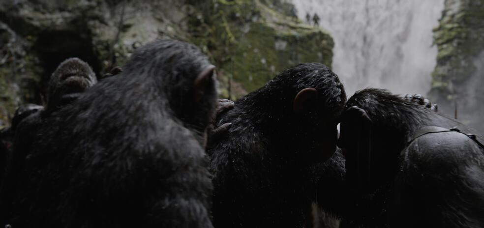 Planet Der Affen: Survival Besetzung