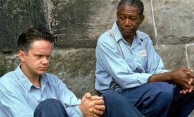 Die Verurteilten mit Morgan Freeman und Tim Robbins - Bild 185