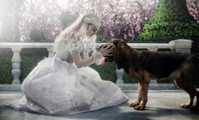 Alice im Wunderland mit Anne Hathaway - Bild 10