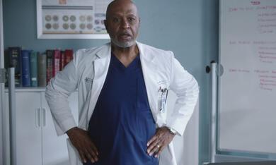 Grey's Anatomy - Staffel 18 - Bild 9