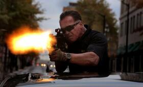 Arnold Schwarzenegger - Bild 256