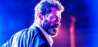 Bild zu:  Hugh Jackman in Logan - The Wolverine