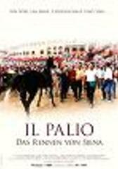 Il Palio - das Rennen von Siena