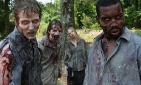 The Walking Dead - Bild 19