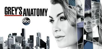Bild zu:  Grey's Anatomy: Staffel 14