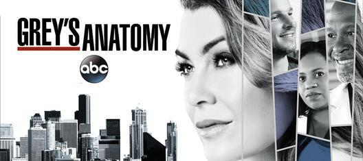 Greys anatomy noch dabei