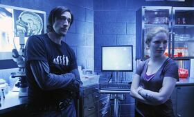 Splice - Das Genexperiment mit Adrien Brody - Bild 12