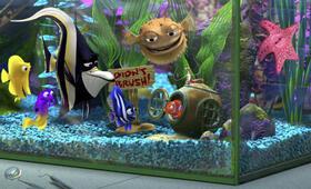 Findet Nemo - Bild 2