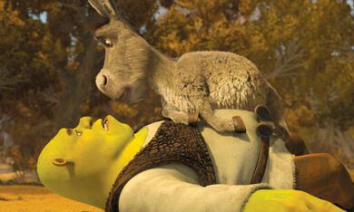 Shrek 4: Für immer Shrek - Bild 4