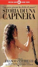 Zeffirellis Spatz - Poster