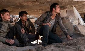 Maze Runner 2 - Die Auserwählten in der Brandwüste mit Dylan O'Brien - Bild 7