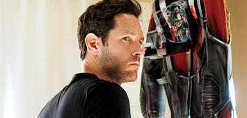 Bild zu:  Paul Rudd in Ant-Man