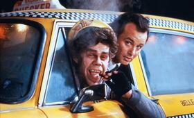 Die Geister, die ich rief... mit Bill Murray und David Johansen - Bild 70