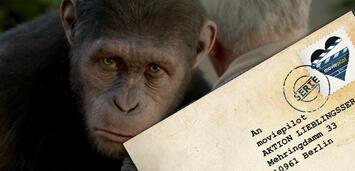 Bild zu:  Planet der Affen