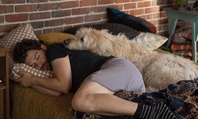 Dog Days mit Adam Pally - Bild 6