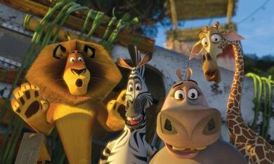 Madagascar 2 - Bild 8