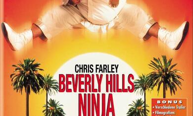 Beverly Hills Ninja - Die Kampfwurst - Bild 1