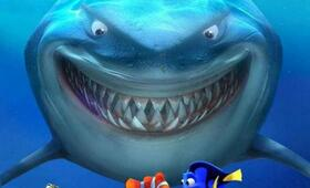 Findet Nemo - Bild 13