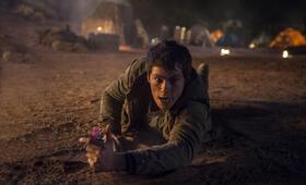Maze Runner 2 - Die Auserwählten in der Brandwüste mit Dylan O'Brien - Bild 8