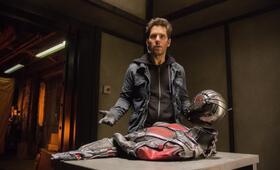 Ant-Man mit Paul Rudd - Bild 67
