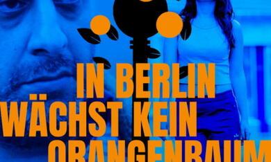 In Berlin wächst kein Orangenbaum - Bild 7